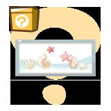 MI_shell-picture