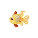 fish_Spotted-Cardinalfish