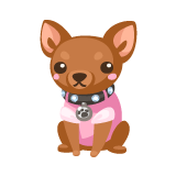 chihuahua-plushie