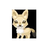 Guía para jugar Pet Society Cash-coyote-petling