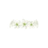flower crown: NEW 856 WHITE FLOWER CROWN PNG