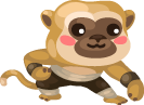 Shifus-Monkey-Pal